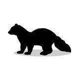 Sable marten mink mammal black silhouette animal Royalty Free Stock Photo