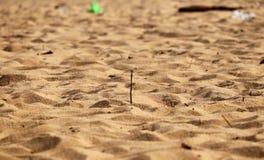Sable sur des destinations de visite de vacances de plage photo libre de droits