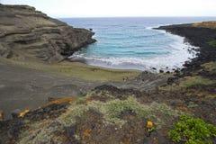 sable vert de plage Photos stock