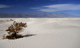 Sables blancs Death Valley, la Californie, Etats-Unis Photos stock