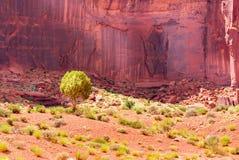 Sables de désert avec les montagnes en pierre rouges Photo stock