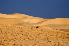 Sables du Sahara photo stock