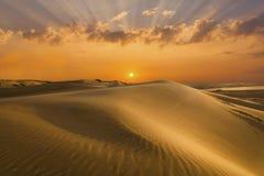 Sables et dunes d'or du désert mongolia photos libres de droits