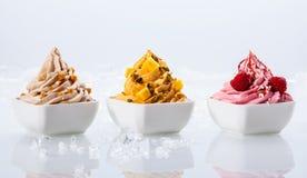 Sabor sortido iogurtes congelados na bacia branca Imagens de Stock Royalty Free