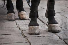 Sabots de cheval sur la rue de pavé Photo stock