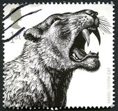 Sabre-Tooth Cat UK Postage Stamp. GREAT BRITAIN - CIRCA 2000s: A used postage stamp from the UK, depicting an illustration of a Sabre-Tooth Cat, circa 2000s Stock Image