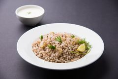 Sabudana Khichadi a traditional maharashtra fasting recipe made in navaratri or vrata. Sabudana Khichadi - An authentic dish from Maharashtra made with sago Stock Photo