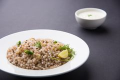 Sabudana Khichadi a traditional maharashtra fasting recipe made in navaratri or vrata. Sabudana Khichadi - An authentic dish from Maharashtra made with sago Royalty Free Stock Photography