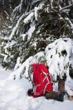 Sac à dos avec des bottes sous l'arbre Image stock