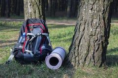 Sac à dos lourd de trekking dans la forêt avec les pots verts de l'eau Images stock