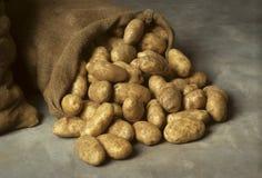 sac à pommes de terre de toile de jute renversé images libres de droits