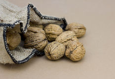 Pleines noix de sac Photographie stock
