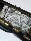 Sac avec des dollars Photographie stock libre de droits