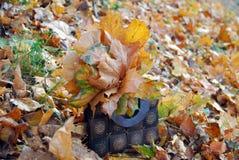 Sac avec des feuilles d'automne Photos stock