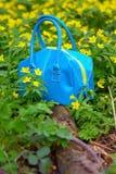 Sac bleu Photo stock
