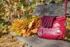 Sac d'épaule de Bourgogne et gants élégants de la même couleur sur l'être Images stock