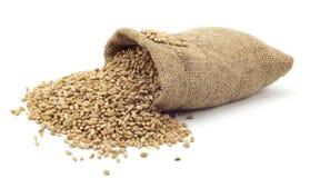Sac de blé Photographie stock libre de droits