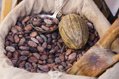 Sac de graines de cacao Image libre de droits