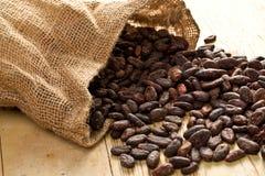 Sac de jute avec des graines de cacao images stock