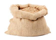Sac de sac de textures de blé Image libre de droits