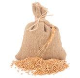 Sac de textures de blé Photo stock
