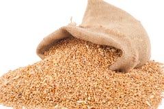Sac de textures de blé Images stock