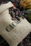 Sac des graines de cacao Image libre de droits