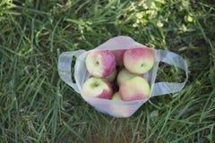 Sac des pommes Photos libres de droits