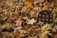 Sac en bois avec des feuilles d'automne Photos libres de droits