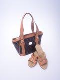 sac les femmes mettent en sac et façonnent la chaussure sur un fond Photographie stock libre de droits