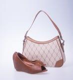 sac les femmes mettent en sac et façonnent la chaussure sur un fond Image stock