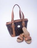sac les femmes mettent en sac et façonnent la chaussure sur un fond Images stock