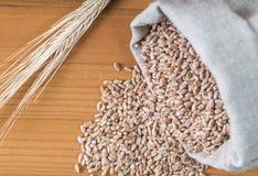 Sac rempli de blé et des oreilles de blé sur un fond en bois Photos stock