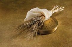 Saca y el trigo en el oro Foto de archivo libre de regalías