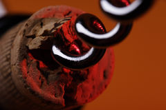 Sacacorchos en el corcho Foto de archivo