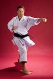 Sacador del karate Imágenes de archivo libres de regalías