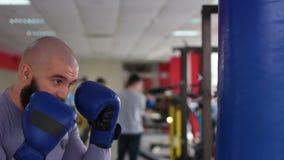 Sacadores practicantes del boxeador de sexo masculino profesional en el bolso del boxeo, funcionamiento difícilmente en gimnasio almacen de metraje de vídeo