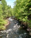 Sacandaga River in the Adirondack wilderness royalty free stock photography