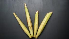 Saccharum edule, also known as terubuk, duruka, Fiji asparagus, dule, pitpit, & naviso. Cultivated in tropical climates. Saccharum edule also known terubuk stock photography