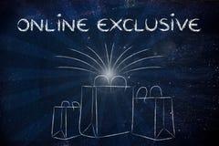 Sacchetti della spesa con i retro raggi e del testo esclusiva online Fotografie Stock