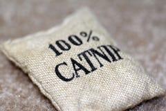 Sacchetto 100% del Catnip immagine stock libera da diritti