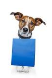 Sacchetto blu del cane Fotografie Stock