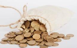 Sacchetto con le monete Immagini Stock Libere da Diritti