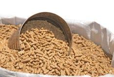 Sacchetto dell'alimentazione del cavallo Immagine Stock Libera da Diritti