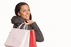 Sacchetto di acquisto sorridente della holding della donna Immagine Stock Libera da Diritti