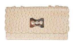 Sacchetto di cuoio del Brown, pelle dello struzzo Fotografia Stock Libera da Diritti