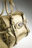 Sacchetto di cuoio delle donne di Gucci Fotografia Stock Libera da Diritti
