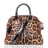 Sacchetto di lusso della femmina del leopardo Fotografie Stock