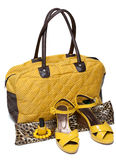 Sacchetto femminile e fannulloni femminili gialli di accoppiamenti Fotografia Stock