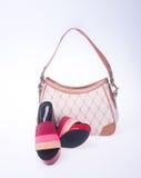 sacchetto le donne insaccano ed adattano la scarpa su un fondo Fotografia Stock Libera da Diritti